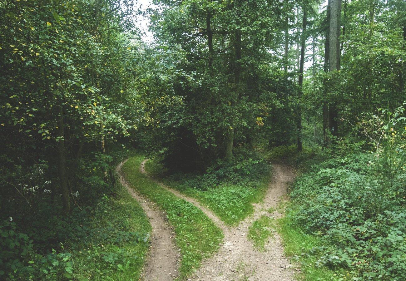 A veces tenemos que decidir qué camino queremos para nuestras vidas